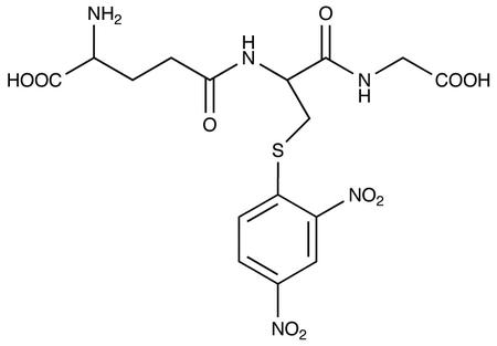 S-(2,4-Dinitrophenyl)-Glutathione