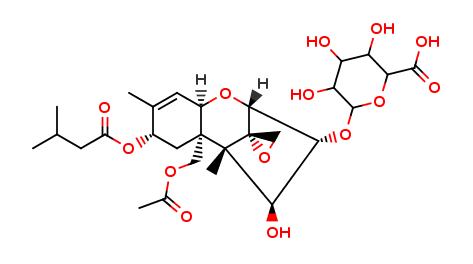 HT-2 Toxin 3-Glucuronide