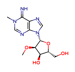 N1,O2'-Dimethyladenosine