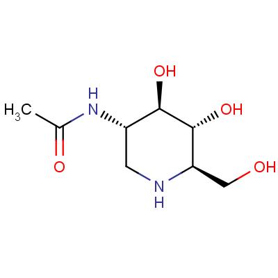 2-Acetamido-1,2-dideoxynojirimycin