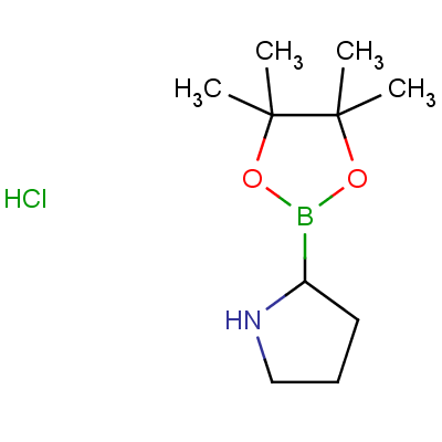 H-Boroproline Pinacol Hydrochloride