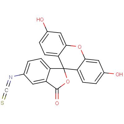 Fluorescein 6-Isothiocyanate, Isomer 2