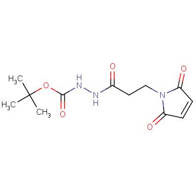 3-(Maleimidopropane-1-carbonyl-1-(tert-butyl)carbazate