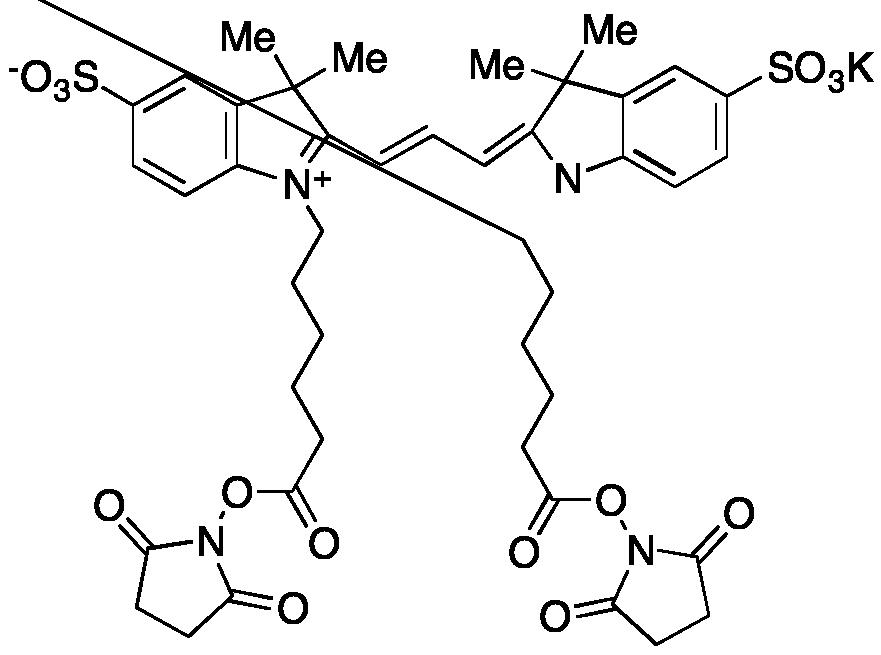 Cyanine 3 Bihexanoic Acid Dye, Succinimidyl Ester, Potassium Salt